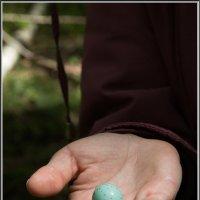 Мир на ладони :: Михаил Розенберг