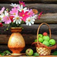 Касмея,яблоки :: Павлова Татьяна Павлова