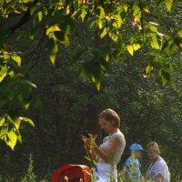 Жизнь в парке :: Андрей Лукьянов