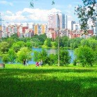 Городской пейзаж :: Людмила Монахова