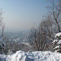 Казахстан, Алматы, Коктобе 2016 год :: Евгений Мергалиев