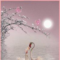«Розовая нежность...» :: vitalsi Зайцев