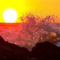 Капли моря :: Александр Неустроев