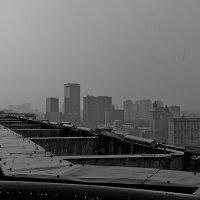 Дождь идет с утра,будет был и есть..(с) :: максим веселов
