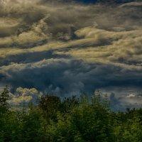 Перед дождём :: Юрий Фёдоров