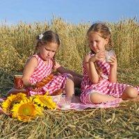 Летний пикник :: Римма Алеева
