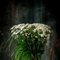 Натюрморт с ромашками :: Алёна Федосеева