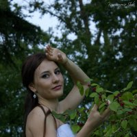 Сбежавшая невеста :: Юлия Курманова
