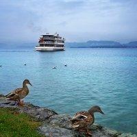 как провожают пароходы... :: Elena Wymann