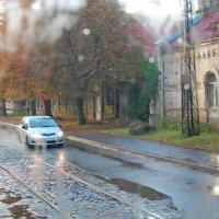Дождь. Из окна трамвая. :: Teresa Valaine