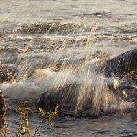 Вода камень точит 4 :: Виталий