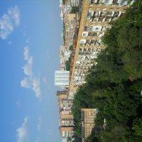 Вид с 14 этажа Волга в Самаре :: Мария Владимирова