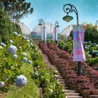 Далат, Парк цветов. :: Виктор Куприянов