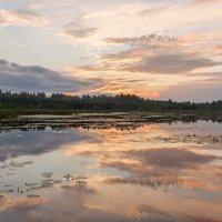 Озеро Озерявки :: Нелли Денисова