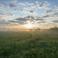 На восходе среди лугов клязьминской поймы (2) :: Igor Andreev