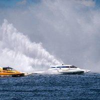 regatta sport :: Nelli