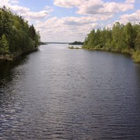 Река с моста :: Наталья