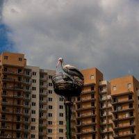 Фрагмент фонаря в виде гнезда аиста :: Елена Кириллова