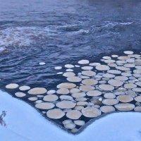 шуга на незамерзающей реке :: Елена