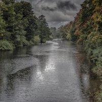 Осенний дождь :: Valeriy Piterskiy