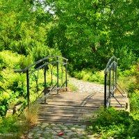 В старом парке :: Николай Танаев