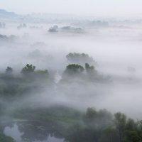 Туманное утро :: ALEXANDR L