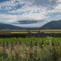 туман рисует горы :: Валерий Цингауз