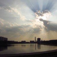 Солнце лучилось :: Андрей Лукьянов