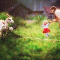 Хорошо в деревне летом :: Dima Pavlov