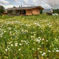 Вижу, как счастье в дом мой приходит :: Ирина Данилова