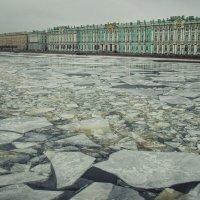 Петербург. Февраль. :: Ксения Старикова