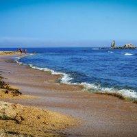 Берег Японского моря... :: Арина