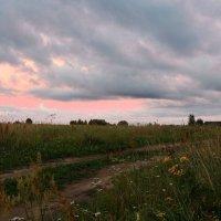 Вечерняя прогулка :: Павлова Татьяна Павлова