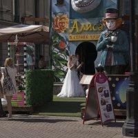 Ах, сэр, возьмите Алису с собой! :: Яков Реймер