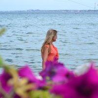 Ах, это черное море :: Юлия Сургучёва