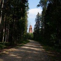 Церковь , что в бору... :: kolyeretka