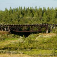 жд мост 1 :: евгений Смоленцев
