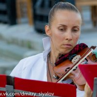 Не тревожь мне душу, скрипка... :: Дмитрий Сиялов
