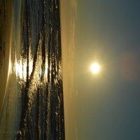 солнце :: Ольга Кирьяшева