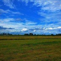 Последний день июля - это не конец лета! :) :: Nina Yudicheva