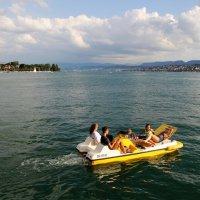 Цюрихское озеро :: Лариса Мироненко
