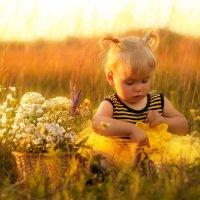 Пчелка. Толкование снов ромашек. :: Aleksandra Rastene