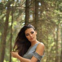 в лесу :: Наталья Сазонова