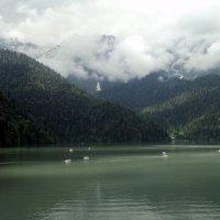 Абхазия . :: Мила Бовкун
