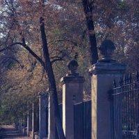 старая ограда :: Дмитрий Барабанщиков