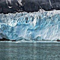 Затерянные во льдах :: Tatiana Belyatskaya