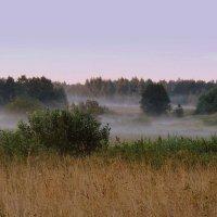 Туман белесый стлался по земле и над рекой висел молочной дымкой :: Павлова Татьяна Павлова