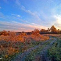 Архив - дорога в осень :: Альберт Казачёк