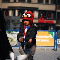 Angry Bird совсем не Angry :: Олег Ведерников