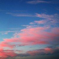 pink :: Екатерина